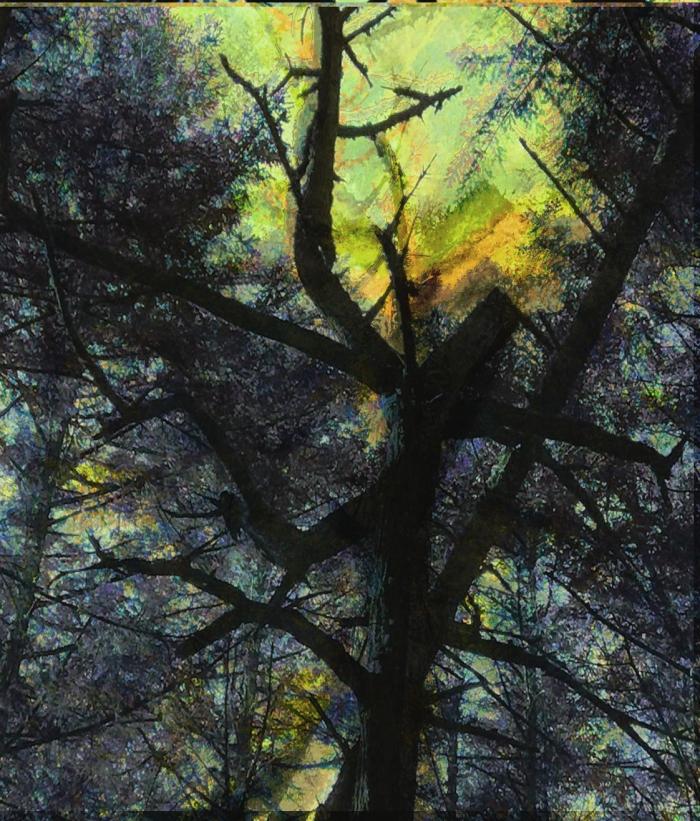 danding in forest